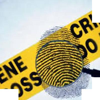 Crimanal & Fraud Investigation